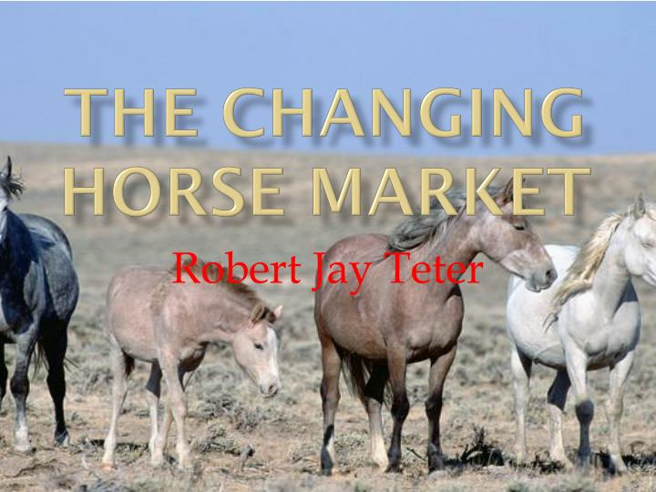 The changing horse market l.jpg