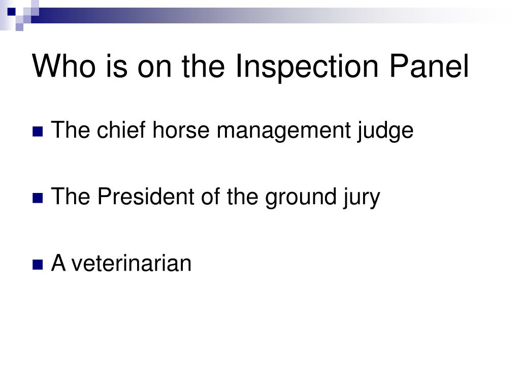 Who is on the Inspection Panel