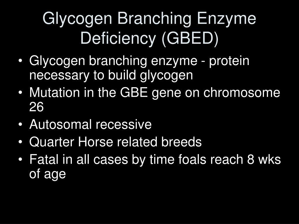 Glycogen Branching Enzyme Deficiency (GBED)