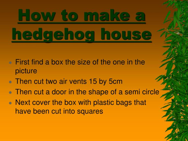 How to make a hedgehog house l.jpg