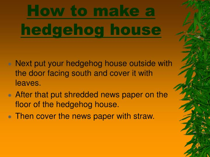 How to make a hedgehog house3 l.jpg