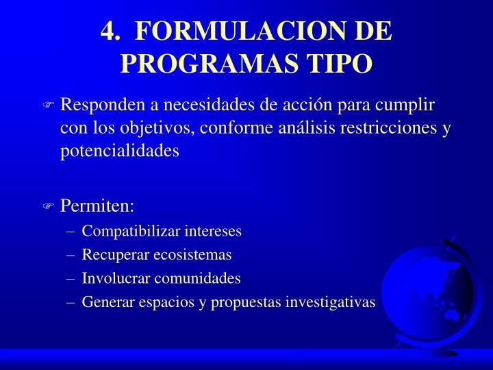 4.  FORMULACION DE PROGRAMAS TIPO