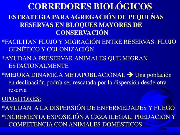 CORREDORES BIOLÓGICOS