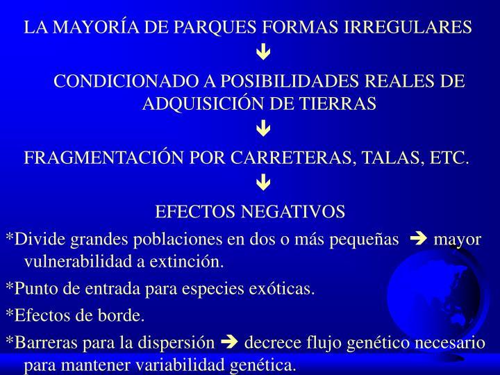 LA MAYORÍA DE PARQUES FORMAS IRREGULARES