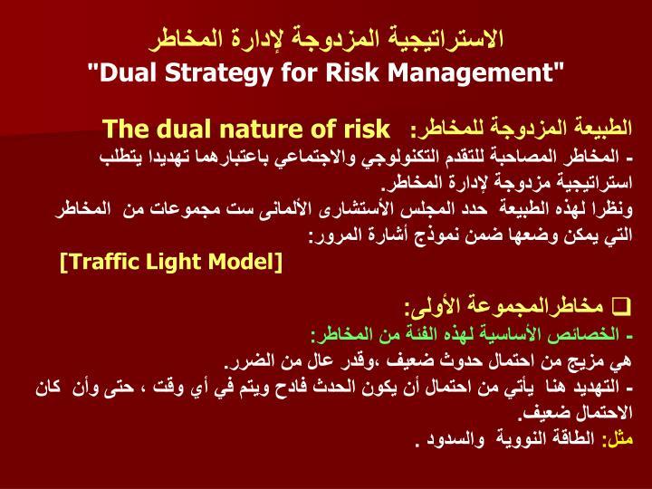 الاستراتيجية المزدوجة لإدارة المخاطر