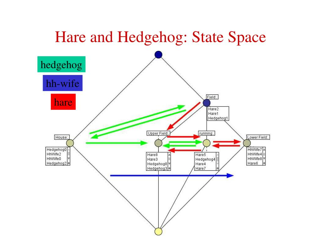 Hare and Hedgehog: State Space