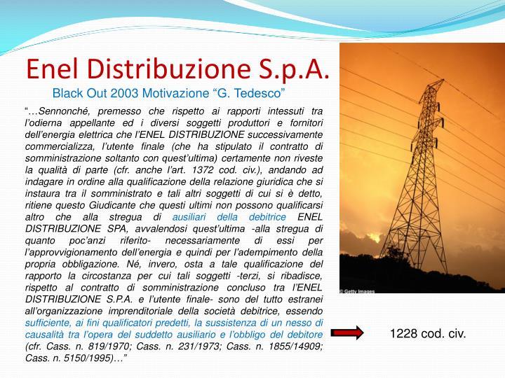 Enel Distribuzione S.p.A.