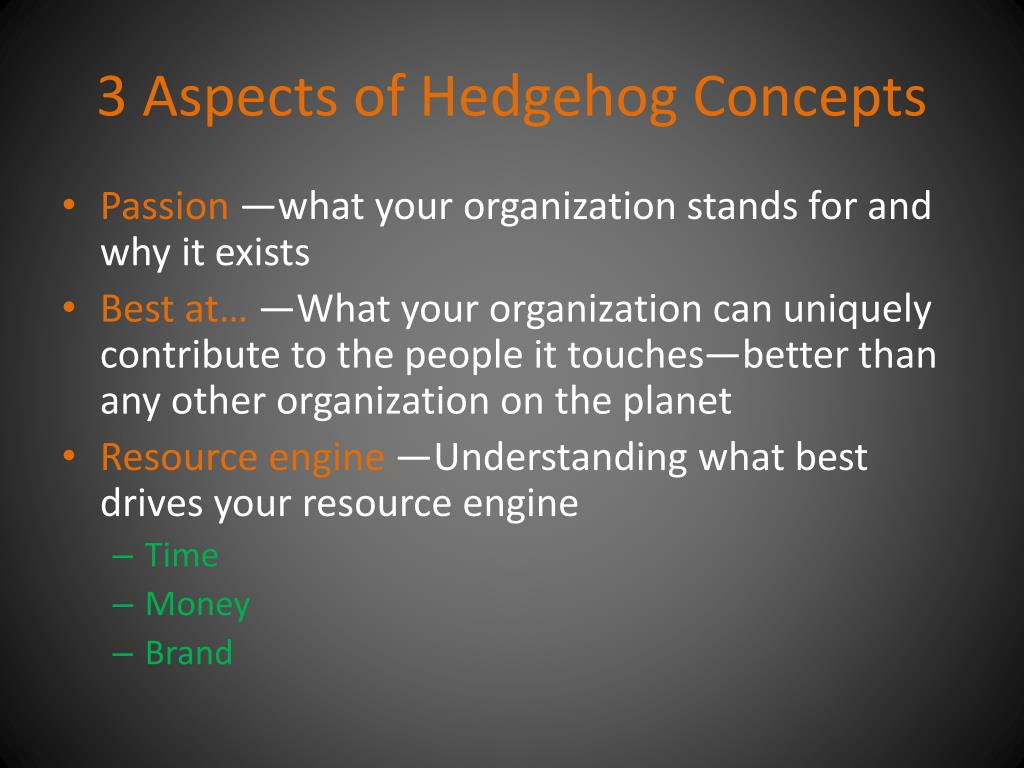 3 Aspects of Hedgehog Concepts