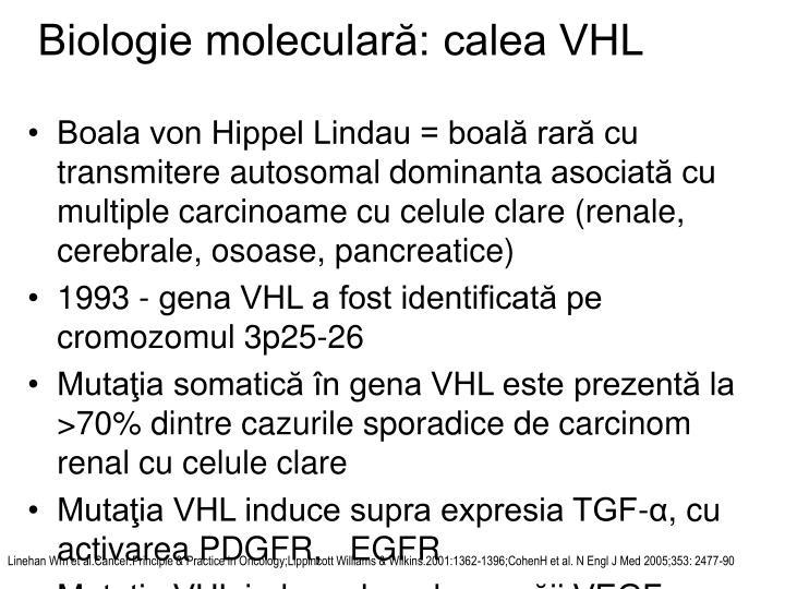 Biologie moleculară: calea VHL