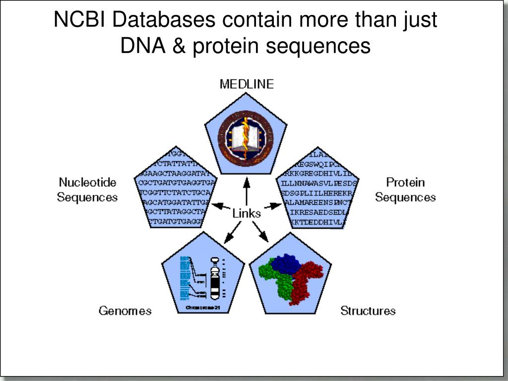 NCBI Databases contain more than just