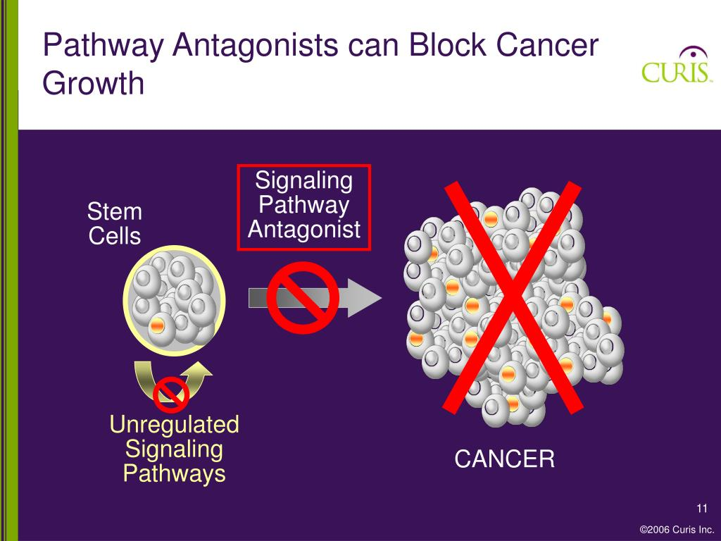 Pathway Antagonists can Block Cancer Growth