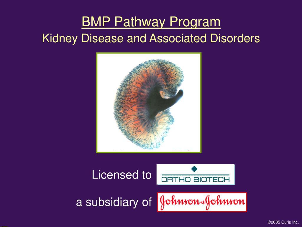 BMP Pathway Program