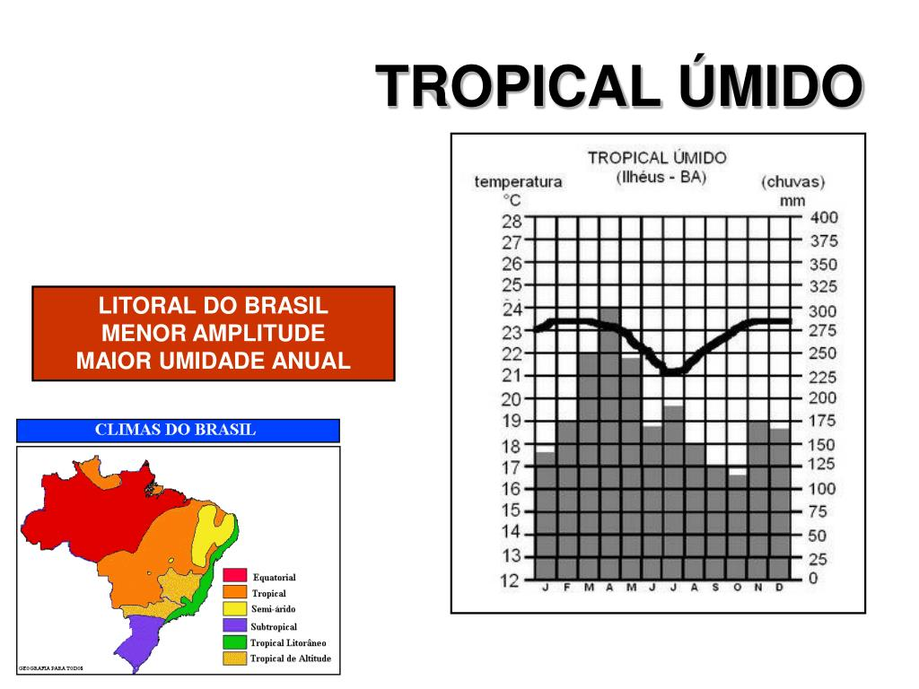 TROPICAL ÚMIDO