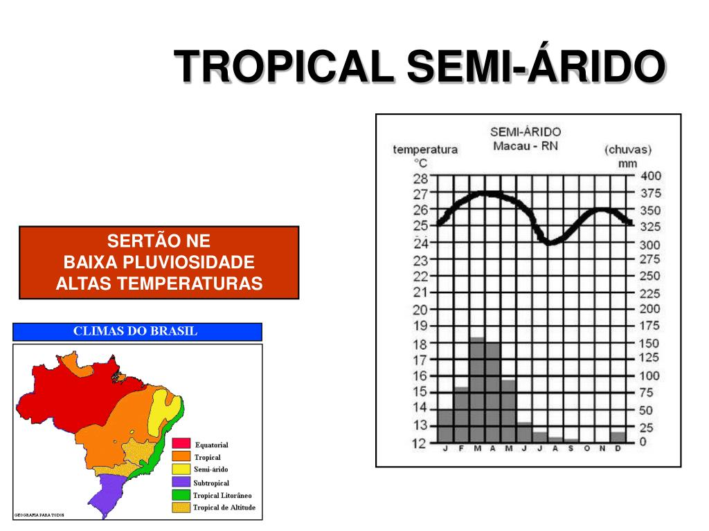 TROPICAL SEMI-ÁRIDO
