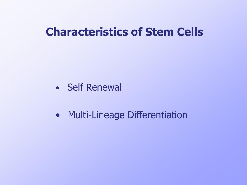 Characteristics of Stem Cells
