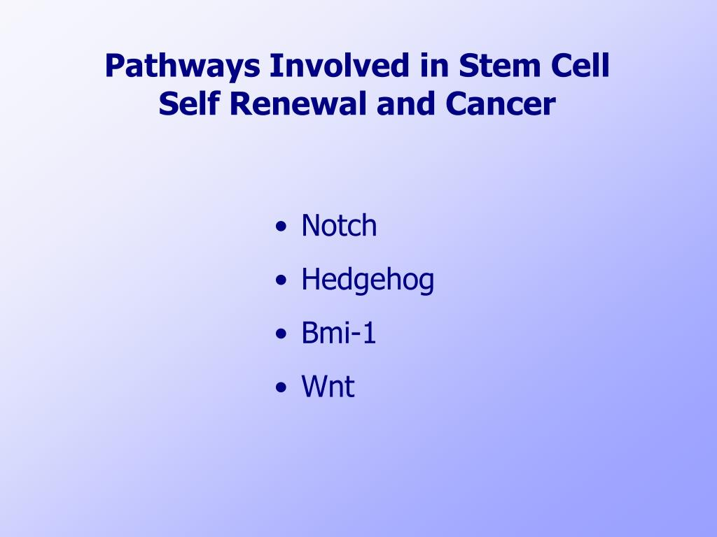 Pathways Involved in Stem Cell