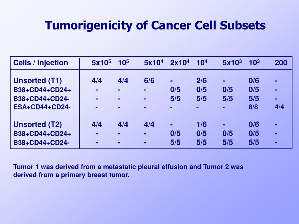 Tumorigenicity of Cancer Cell Subsets