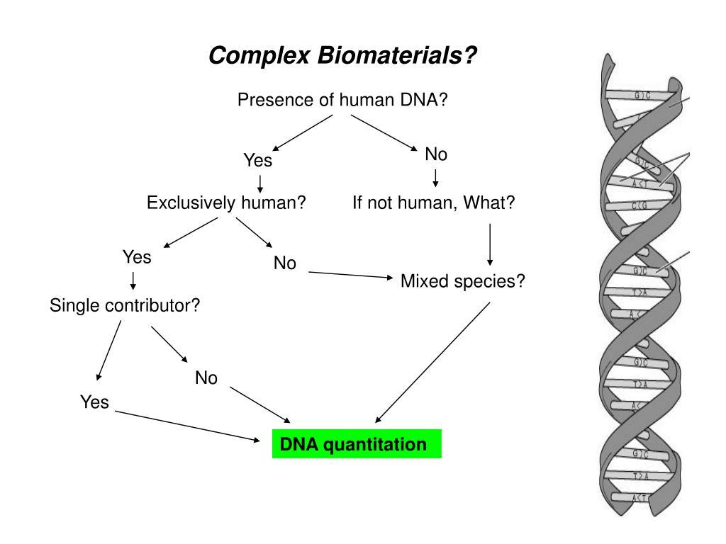 Complex Biomaterials?