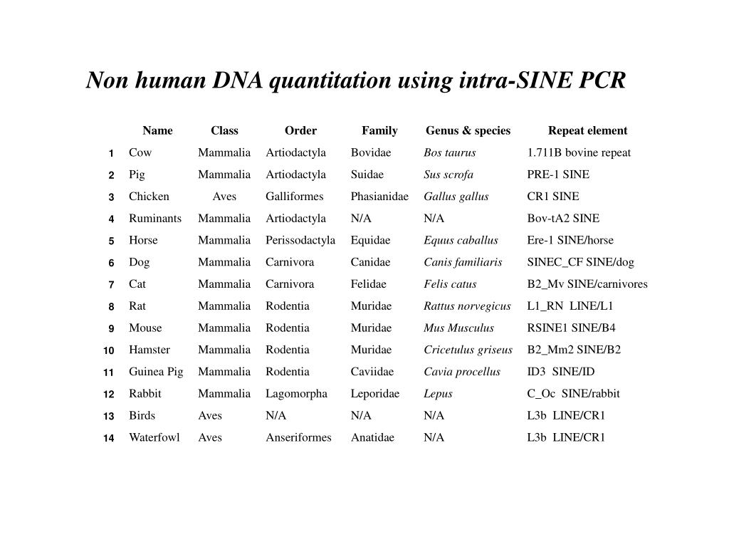 Non human DNA quantitation using intra-SINE PCR