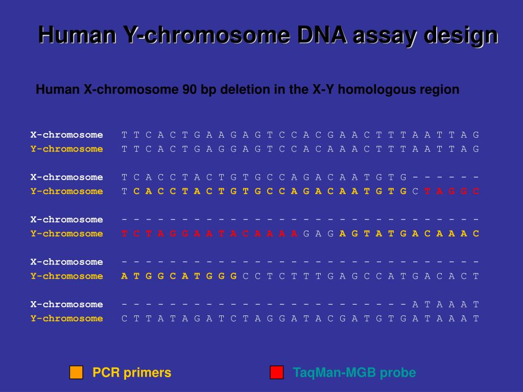 Human Y-chromosome DNA assay design