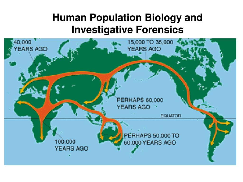 Human Population Biology and Investigative Forensics