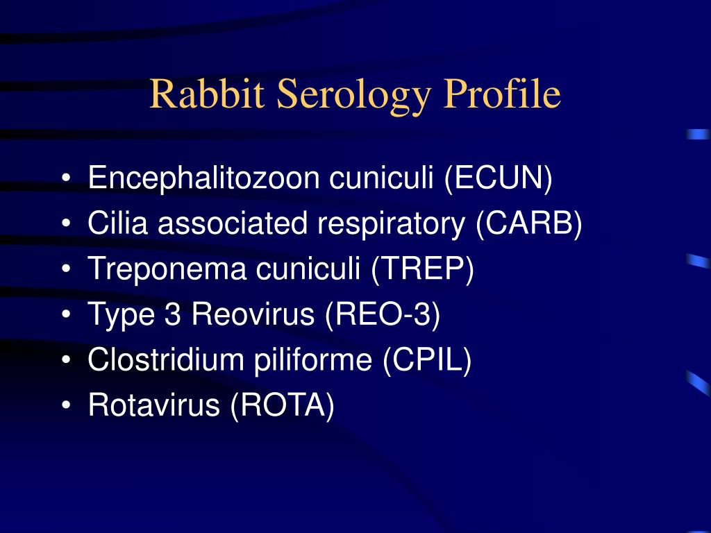 Rabbit Serology Profile