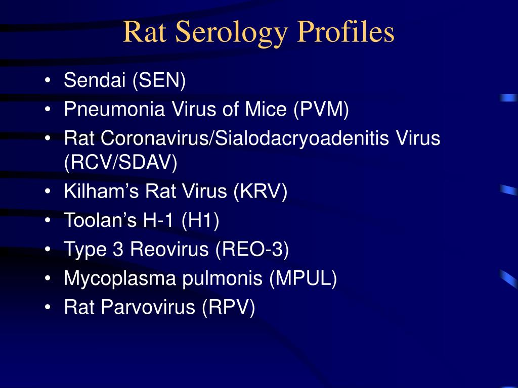 Rat Serology Profiles