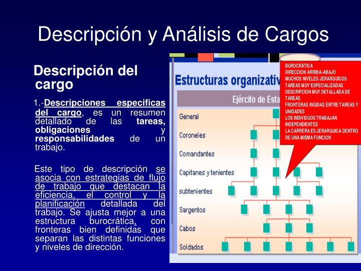 Descripción y Análisis de Cargos
