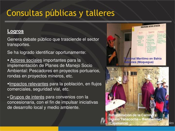 Consultas públicas y talleres