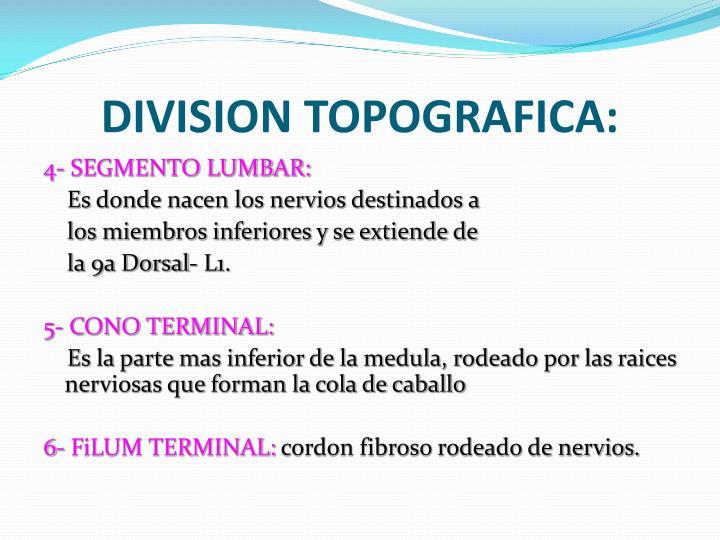 DIVISION TOPOGRAFICA: