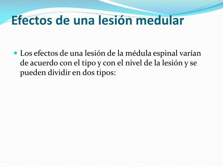 Efectos de una lesión medular