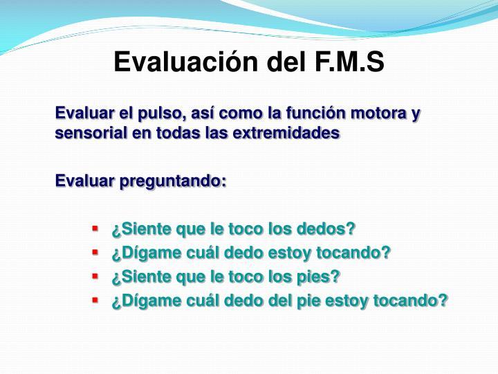 Evaluación del F.M.S