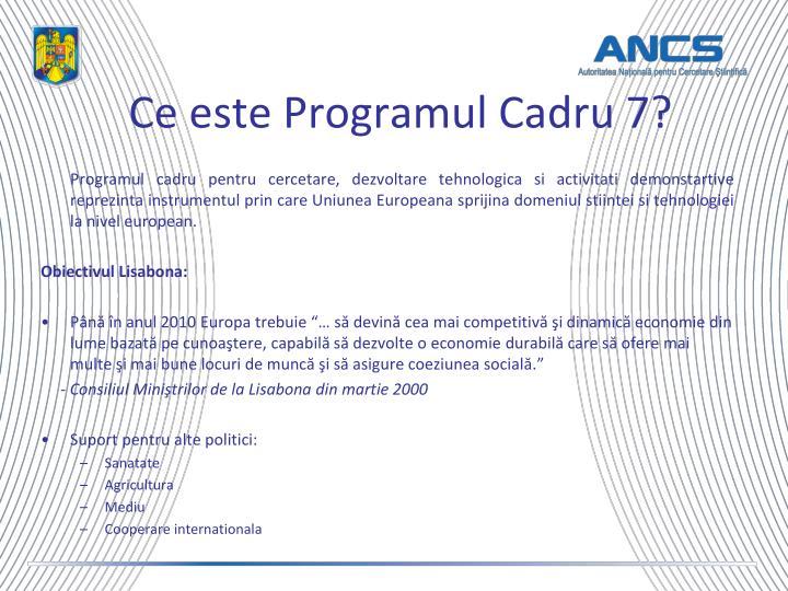 Ce este Programul Cadru 7?