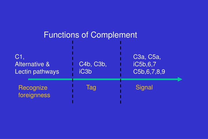 Functions of Complement