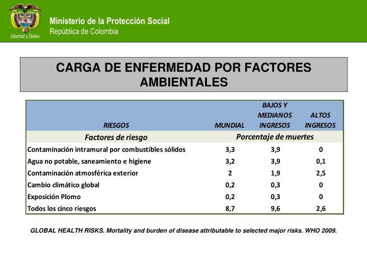 CARGA DE ENFERMEDAD POR FACTORES AMBIENTALES