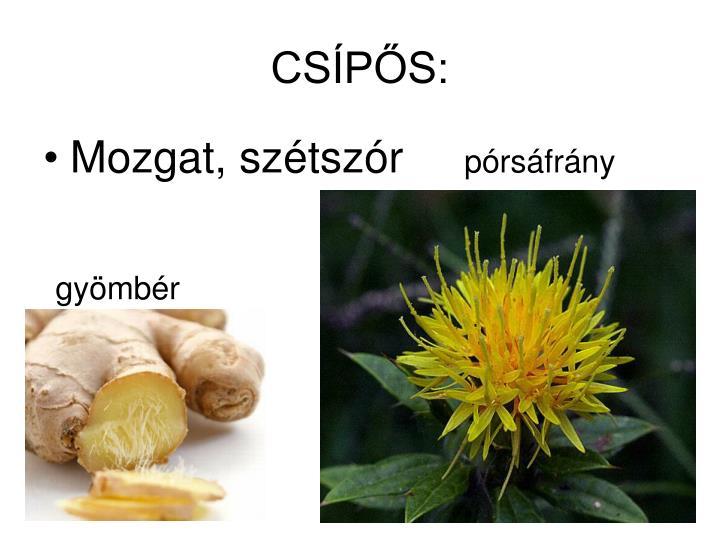 CSÍPŐS: