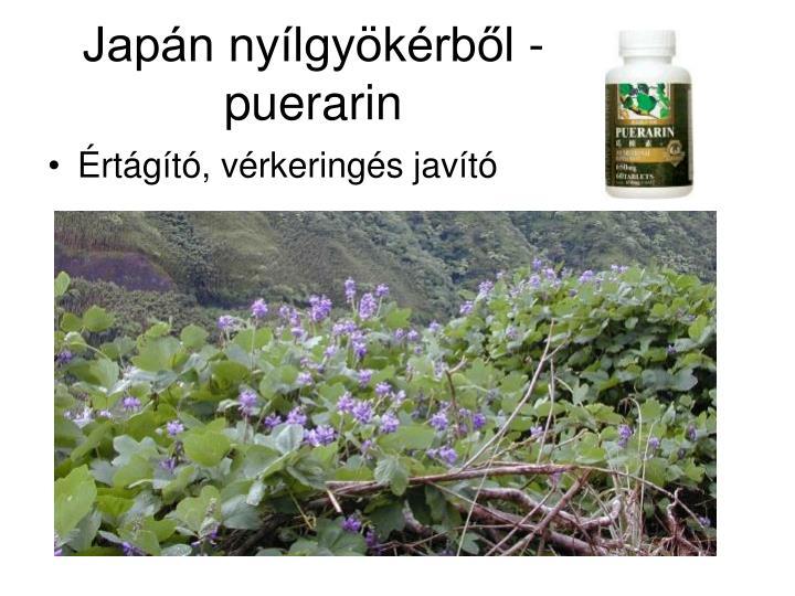Japán nyílgyökérből - puerarin