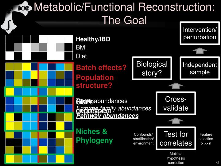 Metabolic/Functional Reconstruction: The Goal