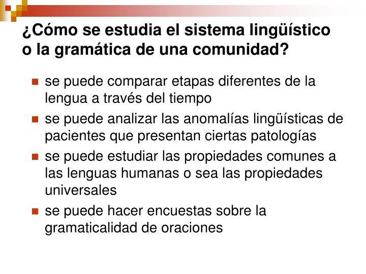 ¿Cómo se estudia el sistema lingüístico o la gramática de una comunidad?
