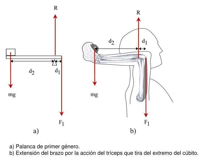 a) Palanca de primer género.