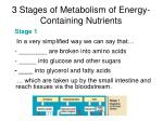 3 stages of metabolism of energy containing nutrients