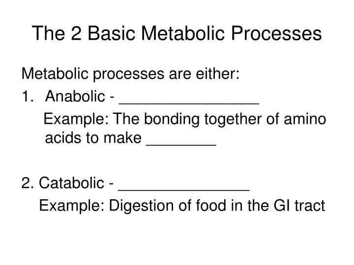 The 2 Basic Metabolic Processes