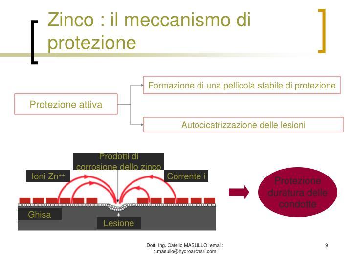 Zinco : il meccanismo di protezione