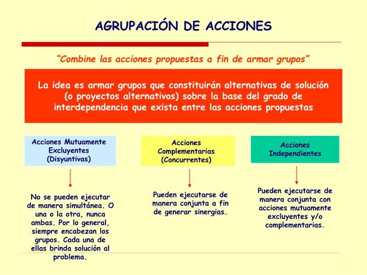 AGRUPACIÓN DE ACCIONES