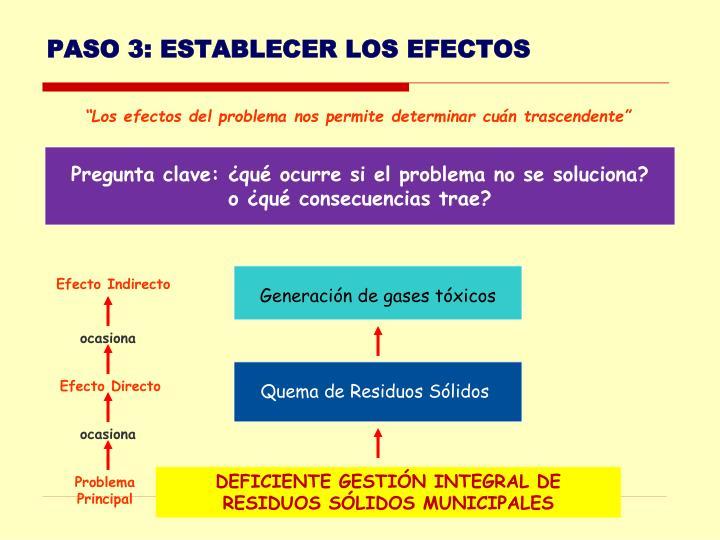 PASO 3: ESTABLECER LOS EFECTOS