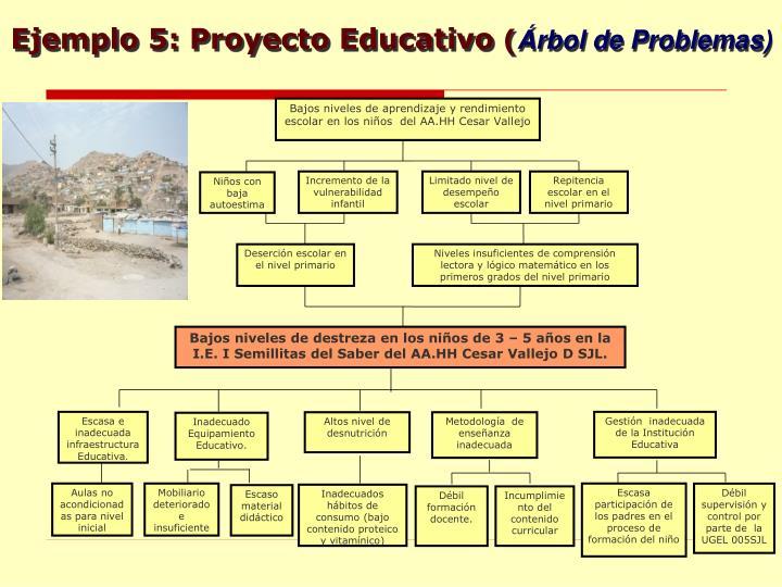 Ejemplo 5: Proyecto Educativo