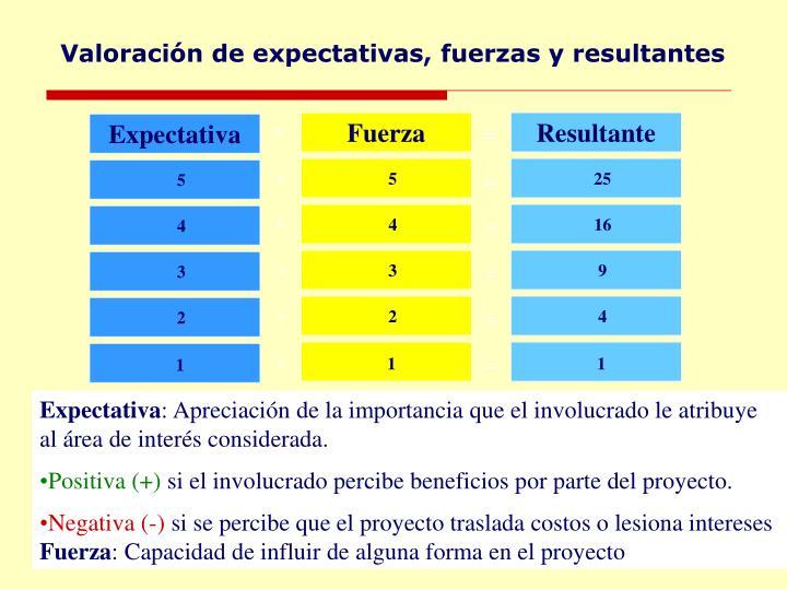 Valoración de expectativas, fuerzas y resultantes