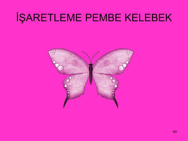 ARETLEME PEMBE KELEBEK