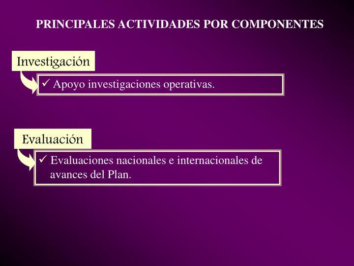 PRINCIPALES ACTIVIDADES POR COMPONENTES