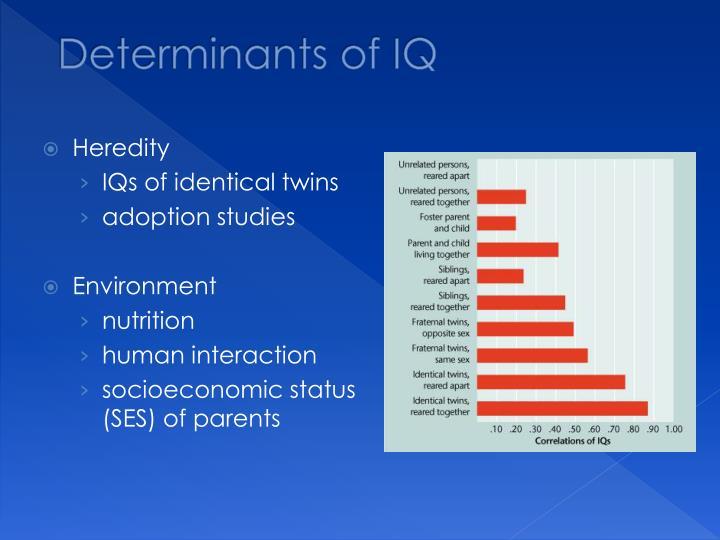 Determinants of IQ